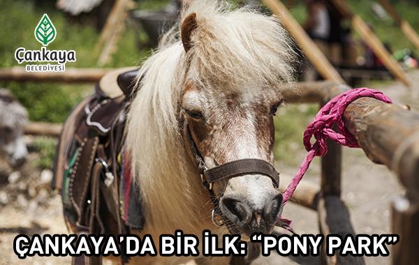 Ponypark 25052016