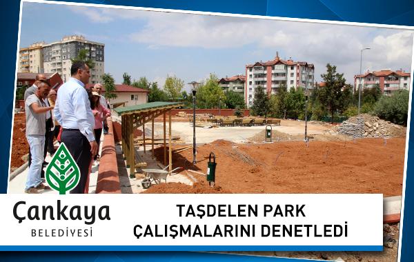 Park Denetimi