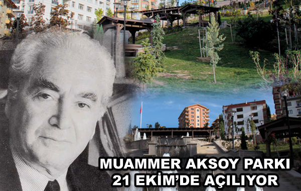 Muammer Aksoy Bs%cc%a7kn
