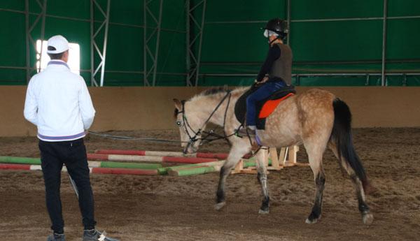 Pony 26022017 A