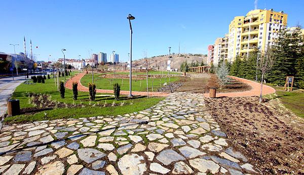 Cavcav_23112017i