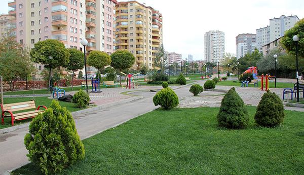 Park11012019a
