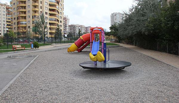 Park11012019c
