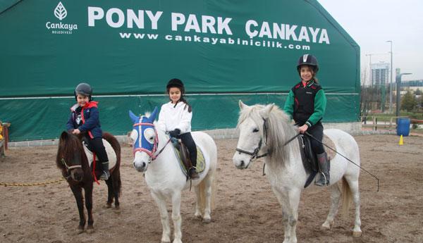 Pony27012019c